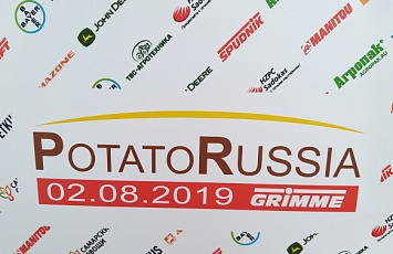 Potato Russia 2019