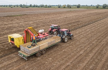 The start of the seed potato harvesting campaign in the 2020/2021 season